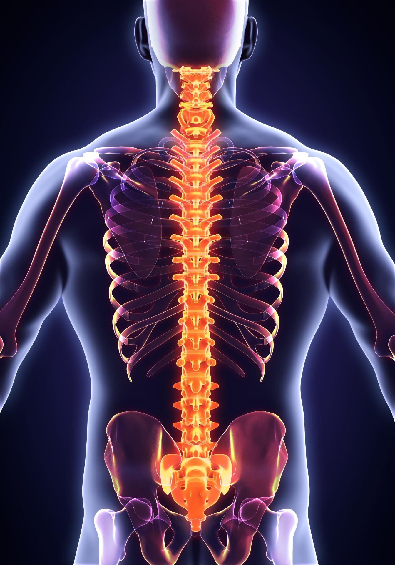 Osteopatia espalda