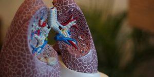 Fisioterapia Respiratoria: Qué es, para qué se usa y ejercicios