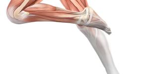 Rotura fibrilar mal curada y tratamientos caseros