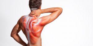 Dolor e Inflamación muscular